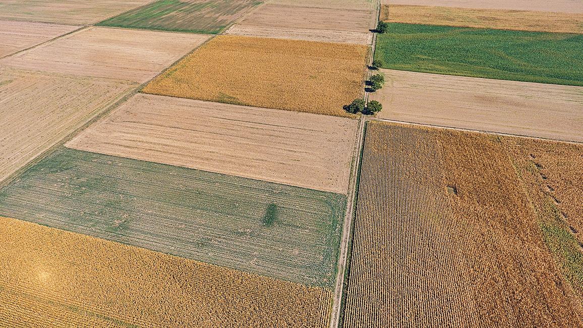 Wiesen und Felder aus den Höhen gesehen